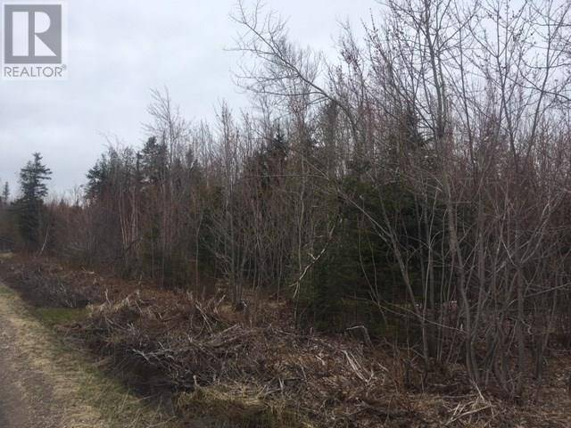 Home for sale at 0 Brown Rd Ste. Anne-de-kent New Brunswick - MLS: M122896