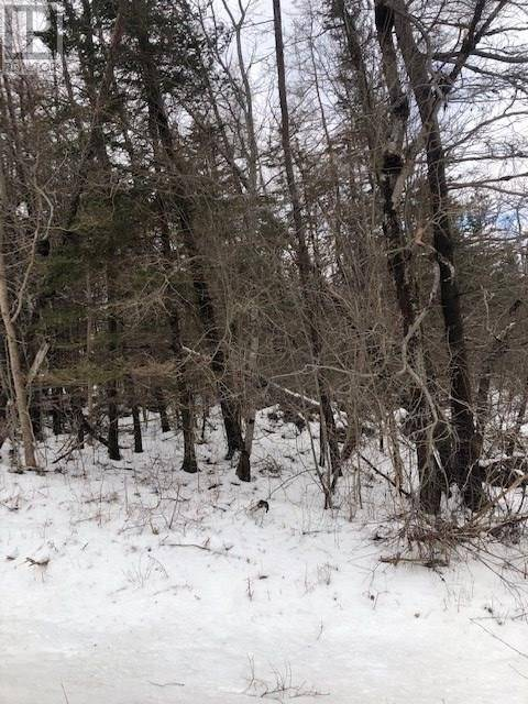 Residential property for sale at  Riley Rd Unit Lot Mary Bear River East Nova Scotia - MLS: 202002903