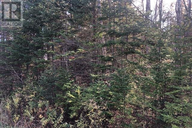 Residential property for sale at Lot Tracey Rd Brookside Nova Scotia - MLS: 202022889