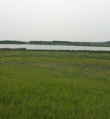 Home for sale at  #lot Twp. Rge.rd  Rural Leduc County Alberta - MLS: E4148098