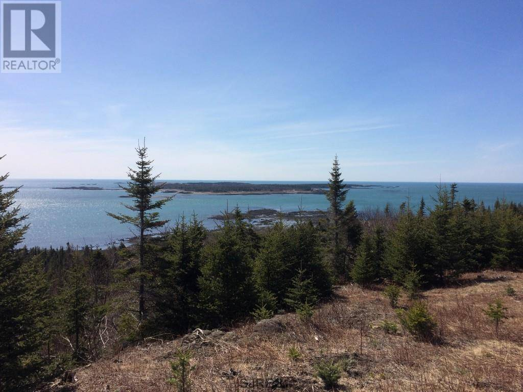 Home for sale at  Lots Red Rd Grand Manan New Brunswick - MLS: SJ162021