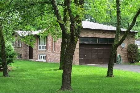 House for rent at 46 Donaldson Rd Unit Main Fl East Gwillimbury Ontario - MLS: N4557525