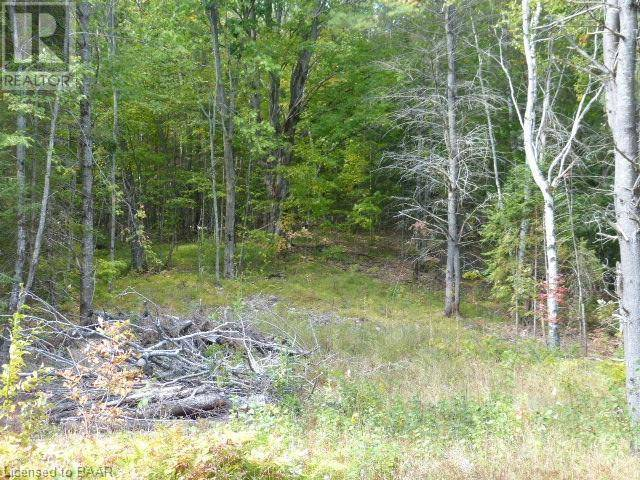 Home for sale at  Maxwell Settlement Rd Bancroft Ontario - MLS: 221819