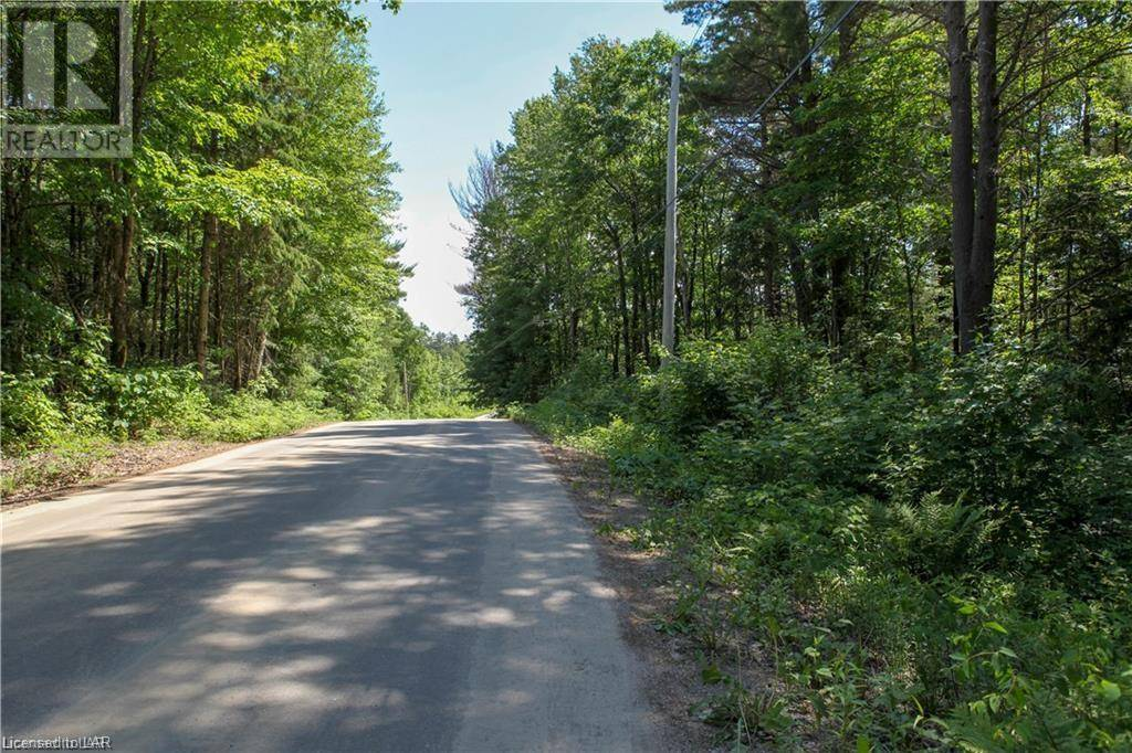 Na -  Propect Lake Road, Bracebridge | Image 1
