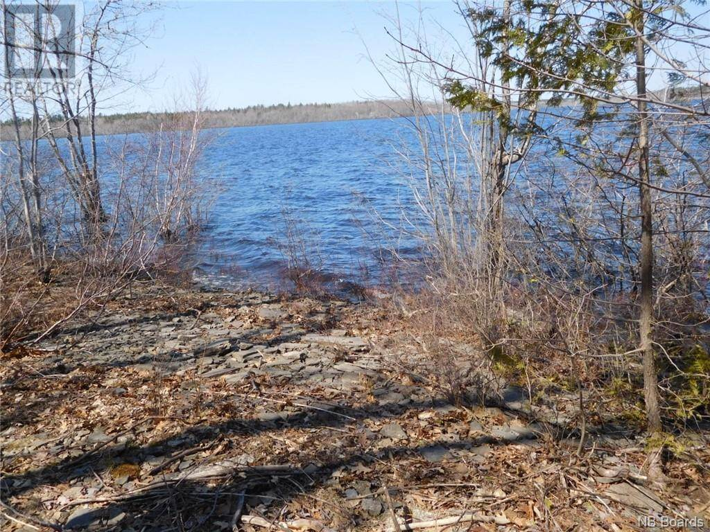 Home for sale at  Narrows Blvd Cambridge-narrows New Brunswick - MLS: NB042750