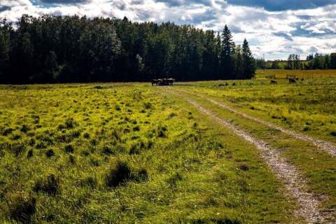 Home for sale at On Range Road 35  Rural Ponoka County Alberta - MLS: A1034925