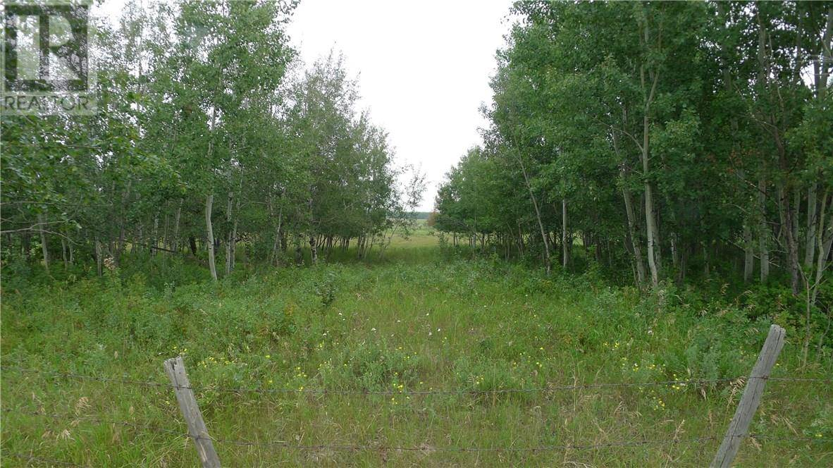 On -  Township Road, Rural Wetaskiwin County | Image 1