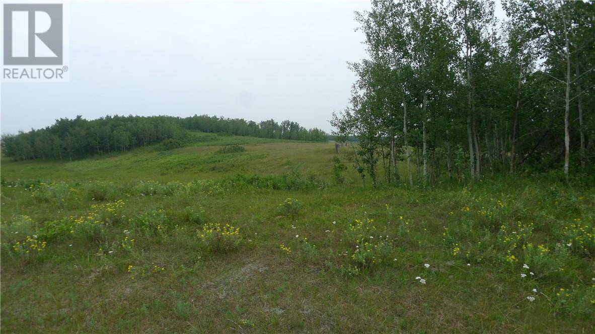 On -  Township Road, Rural Wetaskiwin County | Image 2