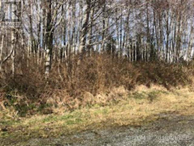 Residential property for sale at  Park Dr Port Hardy British Columbia - MLS: 438074