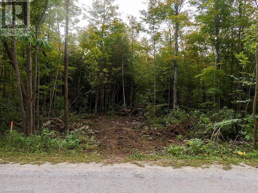 Part Lot 26, Concession 5 Road, South Bruce Peninsula | Image 2