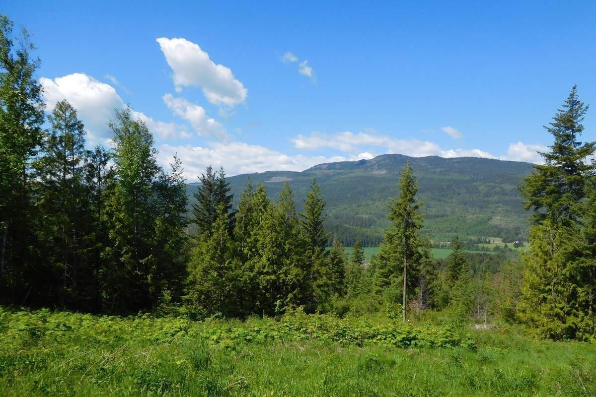 Residential property for sale at Lot 3 Tatlow Rd Unit phase 2 Salmon Arm British Columbia - MLS: 10207309