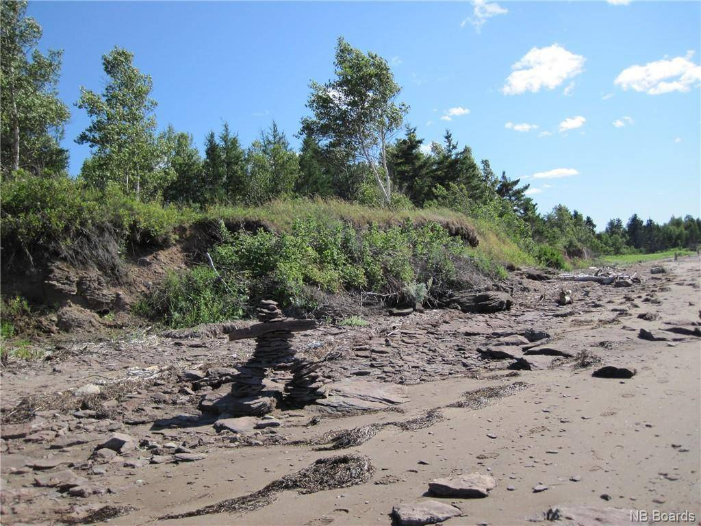 Residential property for sale at  Point Rd Black River-hardwicke New Brunswick - MLS: NB040850