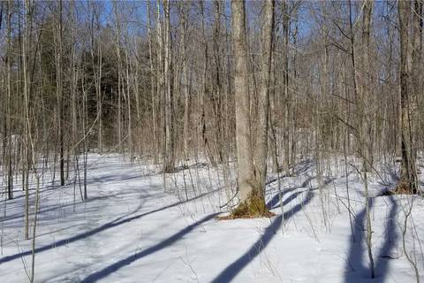 Residential property for sale at 0 Conc 12 Wilson Line Line Kawartha Lakes Ontario - MLS: X4399869