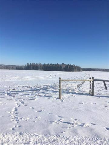 Residential property for sale at  Range Road 53  Rural Mountain View County Alberta - MLS: C4284819