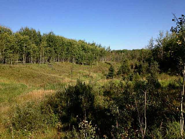 Home for sale at  Rge Rd Rural Wetaskiwin County Alberta - MLS: E4107175