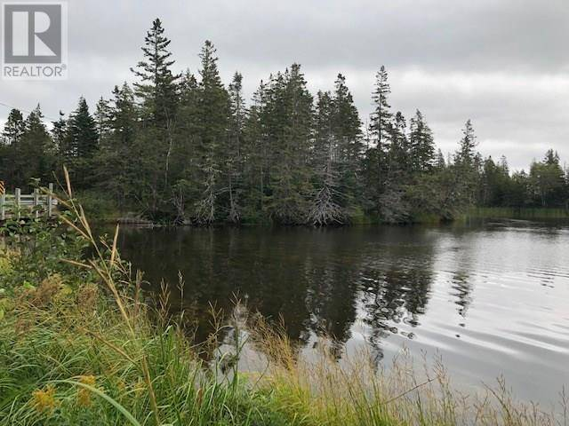 Home for sale at  S/s River Rd South River Bourgeois Nova Scotia - MLS: 201921263