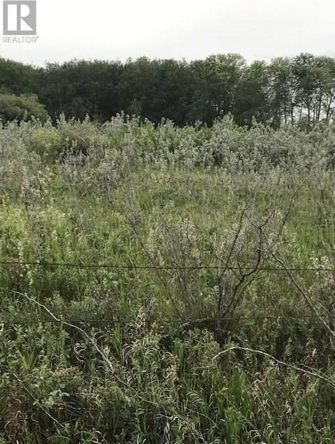 Sandy -  Ridge Acres, Grandora   Image 1