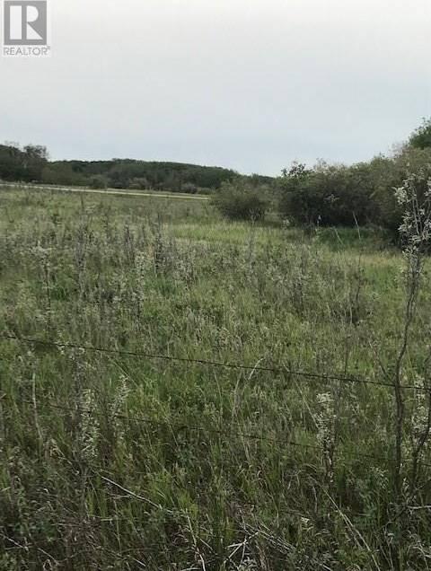 Sandy -  Ridge Acres, Grandora   Image 2