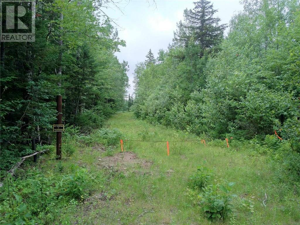 Residential property for sale at  Snyder Rd Belleisle Creek New Brunswick - MLS: NB010508