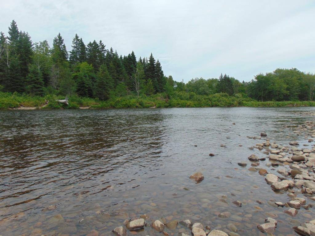 Residential property for sale at  Renous Rd South Renous New Brunswick - MLS: NB018517