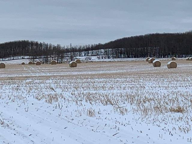 Residential property for sale at  47 Hy Unit Twp Rural Leduc County Alberta - MLS: E4179695