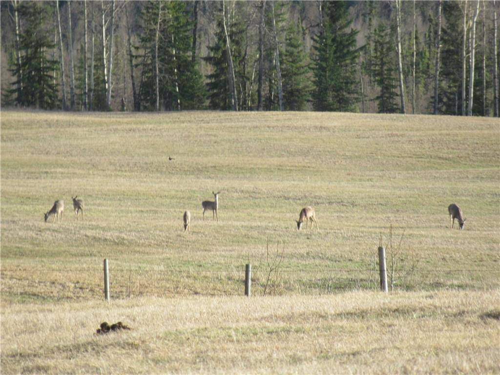 Residential property for sale at  Twp Rd Rural Red Deer County Alberta - MLS: C4295625