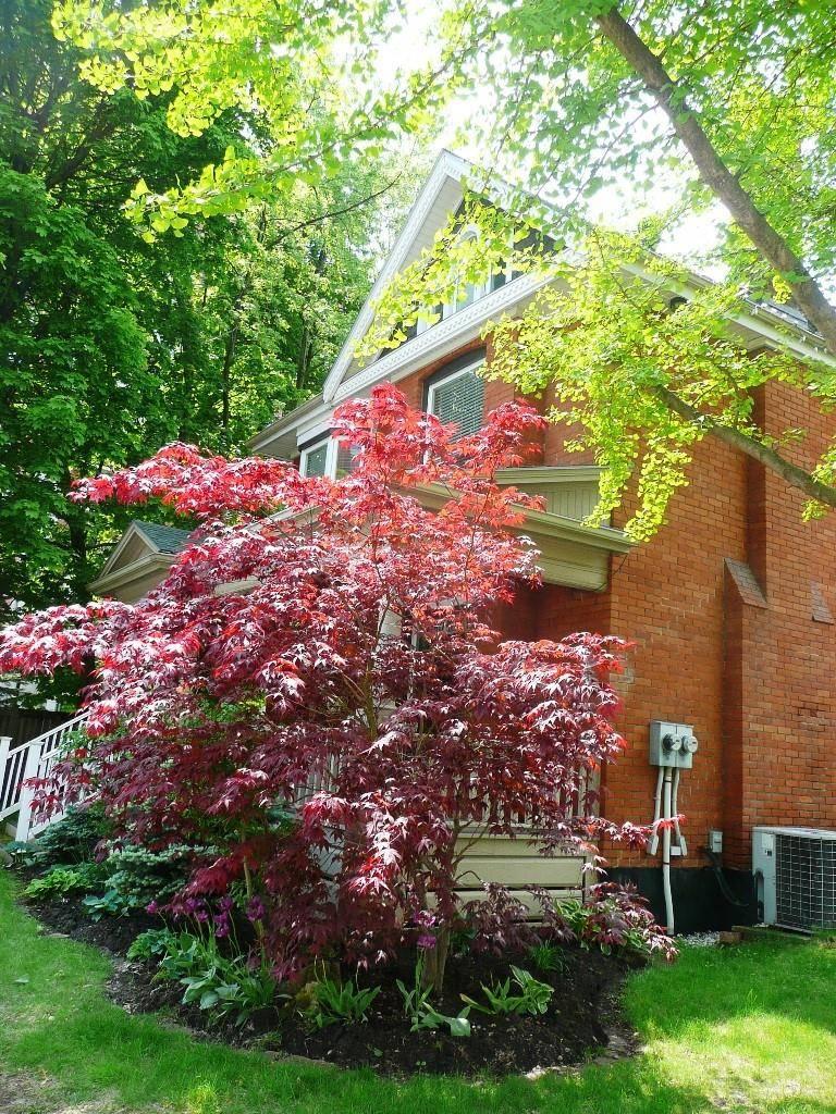 Upper - 454 Maple Avenue, Burlington | Image 2