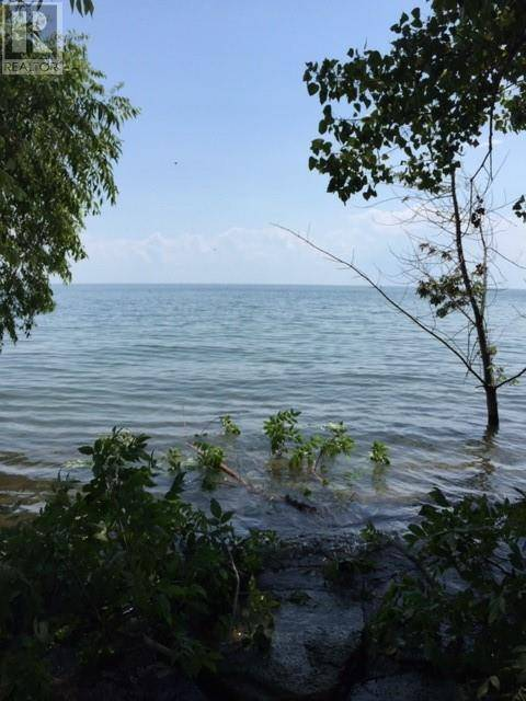 Home for sale at 0 Coopers Rd Pelee Island Ontario - MLS: 19023045